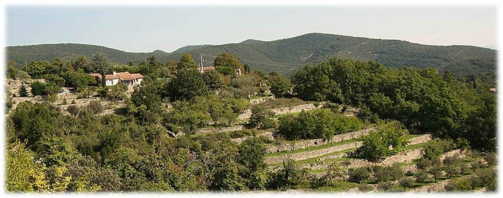Walking In Cévennes - Terraces