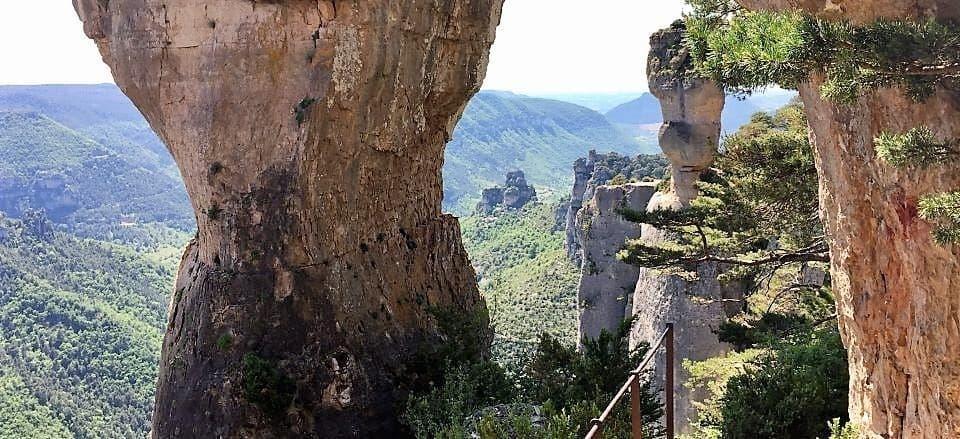 Walking Tarn Gorge - The Vases