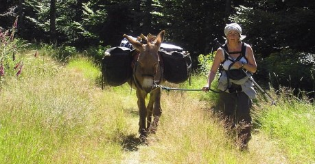 Self-Guided Walking Tours In France:the Ass-Ential Stevenson - Woman And Donkey