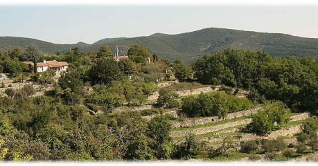 Self-Guided Walking Tours In France:walking Cevennes Heaven - Hillside Terraces