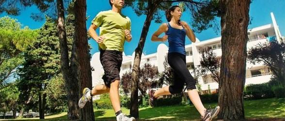 multi-centre walking in France - LGM