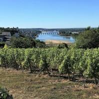 Hikes along the Loire