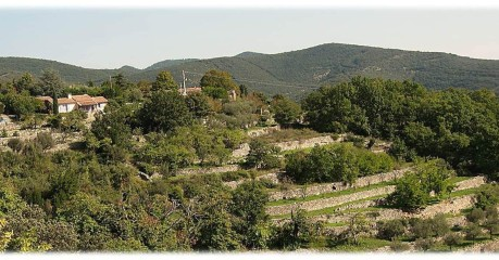 Short walks in France: Hiking Cevennes Heaven