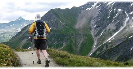 Short walks in France: Walks in the Alps