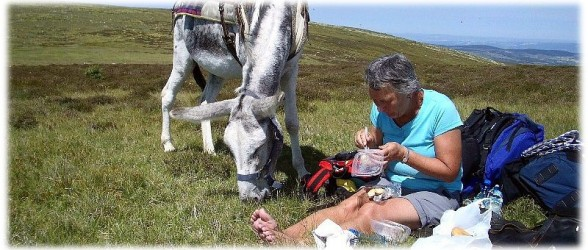 Donkey trekking Stevenson